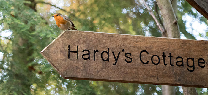 Thomas Hardy - Hardys Woods Robin Redbreast on Signpost